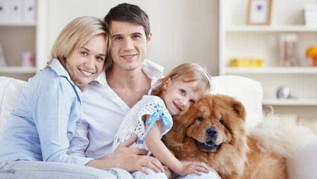 Wills & Trusts dog-young-family Direct Wills Durham